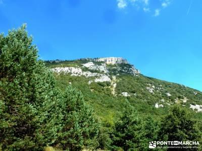 Hayedos Rioja Alavesa- Sierra Cantabria- Toloño;grupo de montaña rutas en cercedilla ruta pedriza